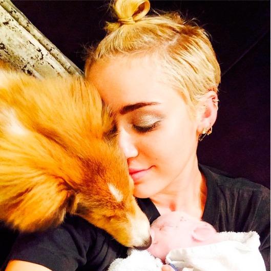 Miley Cyrus con perro y cerdito